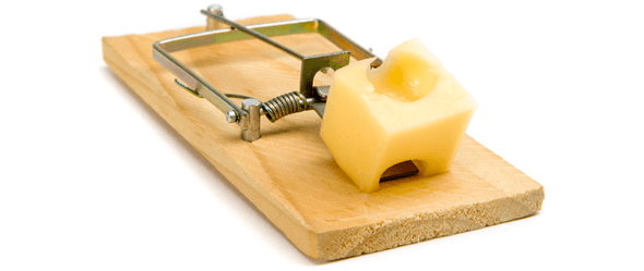 Image of mouse trap